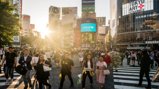 Shibuya Crossing time lapse 4K video