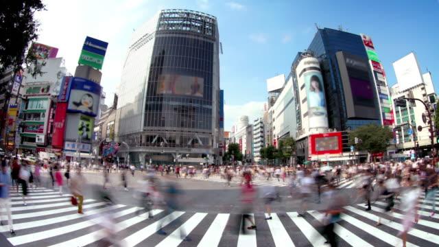 shibuya-kreuzung tokio, japan - überweg warnschild stock-videos und b-roll-filmmaterial