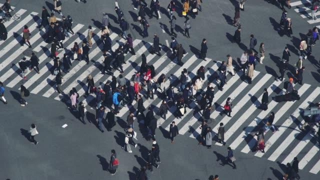 渋谷ゼブラクロッシング - 経済点の映像素材/bロール