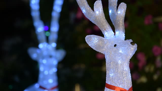 Shift focus of White Reindeer doll. video