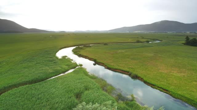 AERIAL Shining river running lazy through a marsh