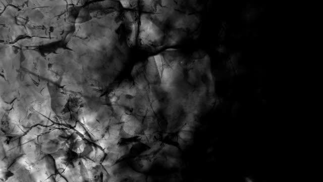 SEMINATURAL SURFACE ALTERATION : shiny, white and black (LOOP) video