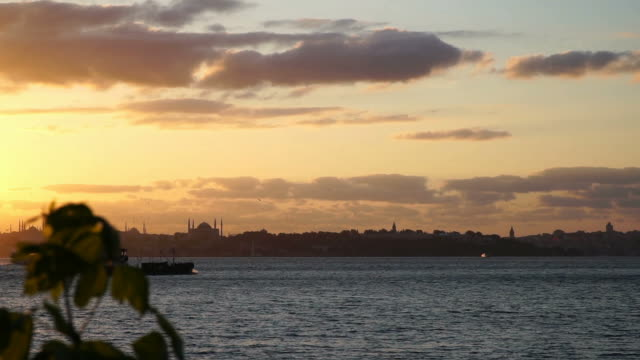 Ship and Historical Istanbul Landscape in Slow Motion video