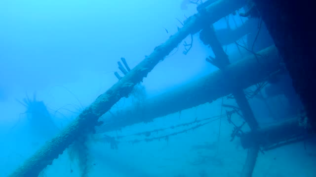 ship wreck Hilma Hooker Bonaire island caribbean sea underwater 1080P video video
