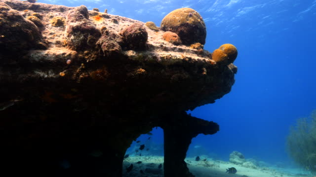 Ship wreck 'Tugboat' in coral reef of Caribbean sea around Curacao video