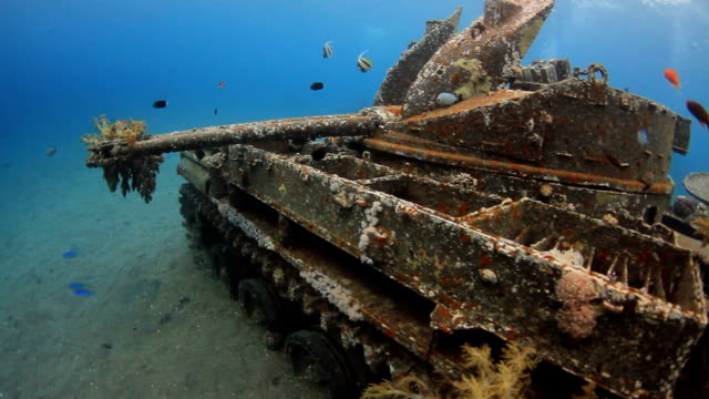 Ship Wreck video