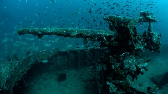 prab shipwreck in chumphon dive site, thailand. - кораблекрушение стоковые видео и кадры b-roll