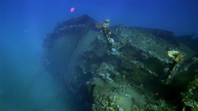 "shipwreck "" the hamada "" freighter wreckage of a large sunken ship in the red sea / abu ghusun marsa alam. - погружённый стоковые видео и кадры b-roll"
