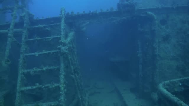 shipwreck underwater in red sea egypt. - погружённый стоковые видео и кадры b-roll