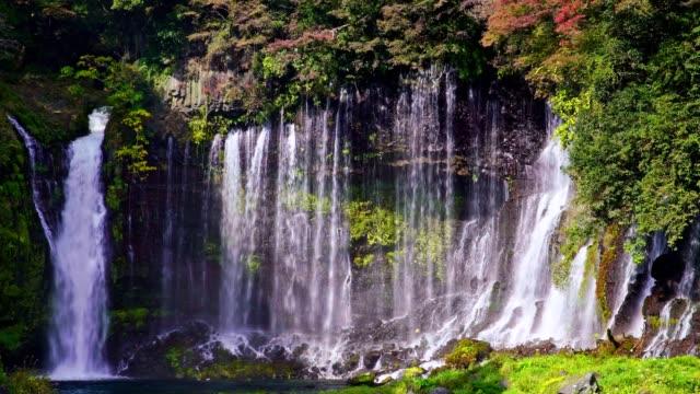 秋の白糸の滝 - 清らか点の映像素材/bロール