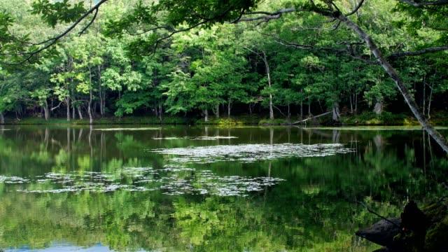 Shiretoko Lake