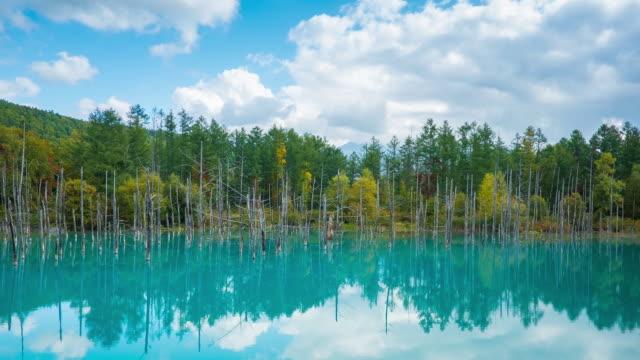 shirogane blue pond i biei, hokkaido - hokkaido bildbanksvideor och videomaterial från bakom kulisserna