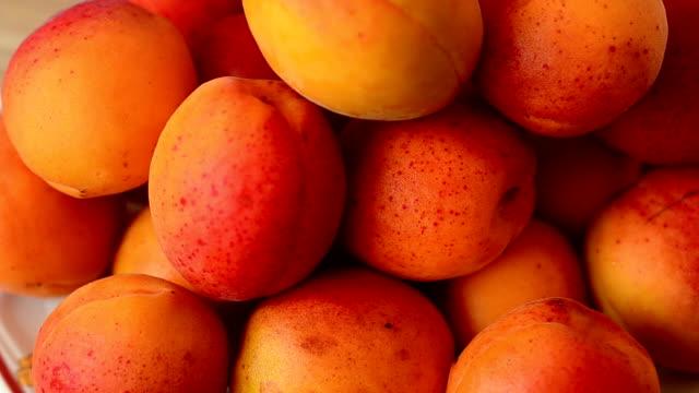 shooting apricot. - абрикос стоковые видео и кадры b-roll