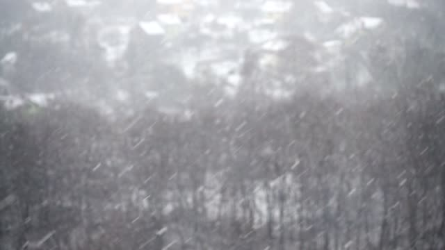 Shooting falling snow in winter. video