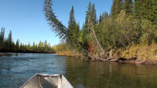 stockvideo's en b-roll-footage met schieten van bewegende motorboot van stroomversnellingen met transparante water van de rivier de lena. - duurzaam toerisme