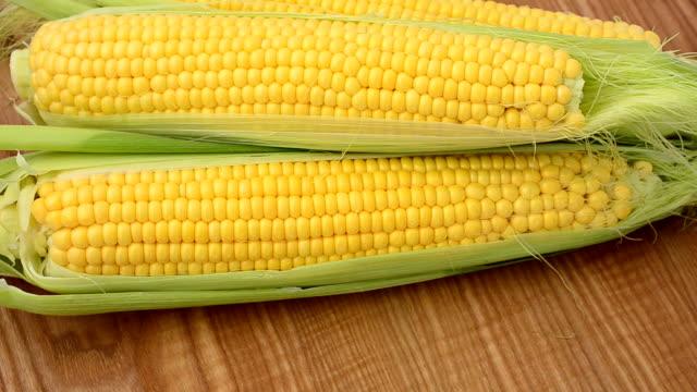 inspelningen av majs. - skalhylsa bildbanksvideor och videomaterial från bakom kulisserna