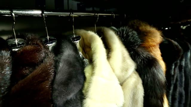 vídeos y material grabado en eventos de stock de abrigos de piel de tienda - peludo