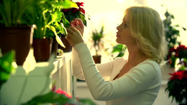 Shopkeeper Caring for Flowers Side view of beautiful shop keeper caring for potted flowers in floral store potted plant stock videos & royalty-free footage