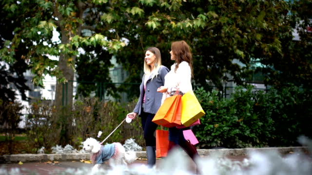 Shopping day video