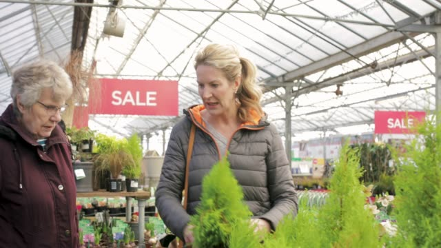 Shopping in a Garden Centre Mature woman and her senior mother shopping in a garden centre. ornamental garden stock videos & royalty-free footage