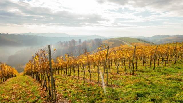 t/l 4k skott av en molnlandskap över höstens vingårdar - steiermark bildbanksvideor och videomaterial från bakom kulisserna