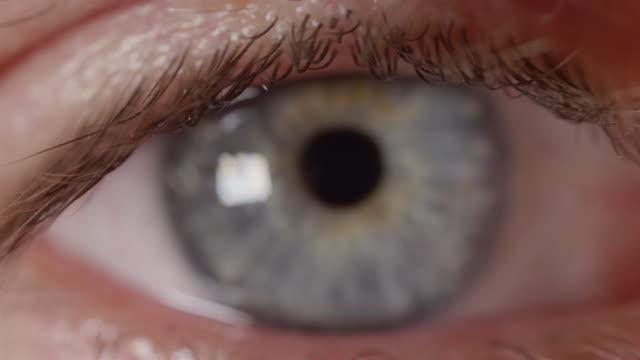 MACRO DOF: Shot of man's eyelashes and refocusing to his vivid bright blue eye. video