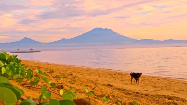 WS Aufnahme der Vulkan Gunung Batur von Sanur beach. – Video