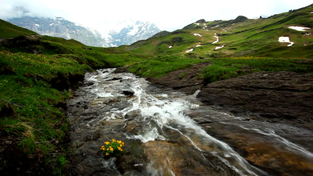 shot of waterfall in grindelwald under jungfrau - grindelwald bildbanksvideor och videomaterial från bakom kulisserna