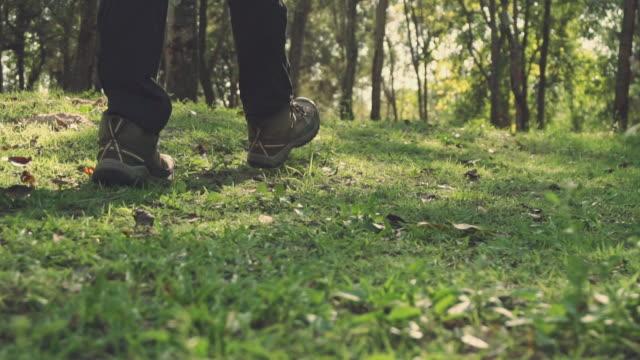 shot woman legs hiking , hiker women walking are exploring the forest natural adventure concept - ekoturystyka filmów i materiałów b-roll