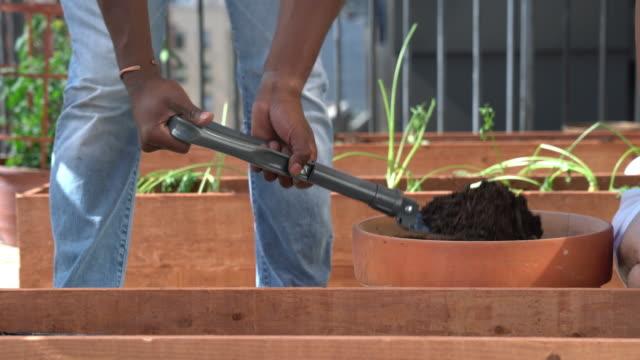 schaufeln erde in eine pflanzerkasten - dachgarten videos stock-videos und b-roll-filmmaterial