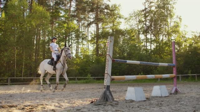 visa hoppning från professionella ryttare - hästhoppning bildbanksvideor och videomaterial från bakom kulisserna