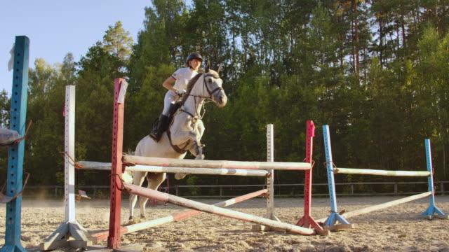 hoppning i naturen. slow motion - hästhoppning bildbanksvideor och videomaterial från bakom kulisserna