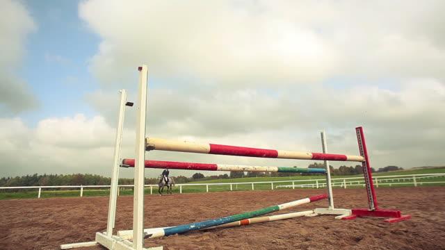 show jumping - hästhoppning bildbanksvideor och videomaterial från bakom kulisserna