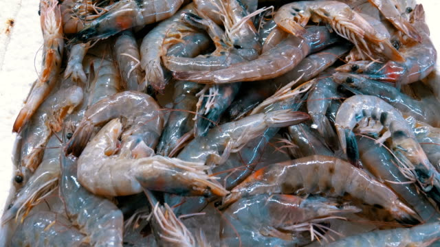 Showcase with Crayfish in the Ice of the Street Market