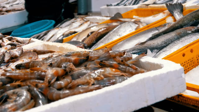 showcase with crayfish in the ice of the street market - banchi di pesci video stock e b–roll