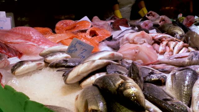 Showcase with Seafood in Ice at La Boqueria Fish Market. Barcelona. Spain video