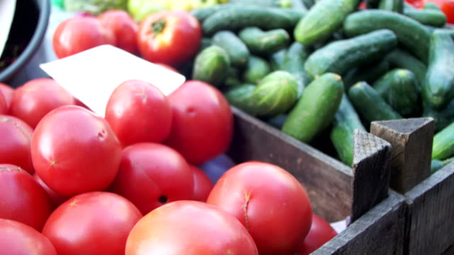 showcase with tomatoes and vegetables in the grocery market. trade - posizione corretta video stock e b–roll