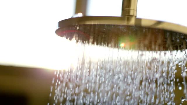 vídeos de stock, filmes e b-roll de cabeça do chuveiro - tomar banho