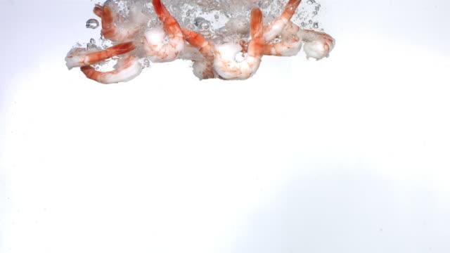 Shrimp splashing into water, slow motion  shrimp seafood stock videos & royalty-free footage