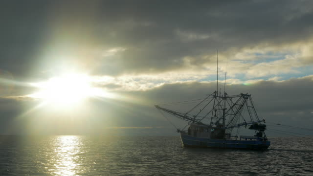 Shrimping Boat Fishing at Sunrise with Nets
