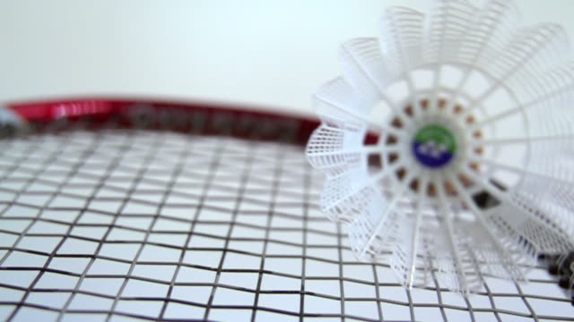 Shuttlecock on a badminton racket Badminton clean background shot in slow motion with racket and shuttlecock competition group stock videos & royalty-free footage