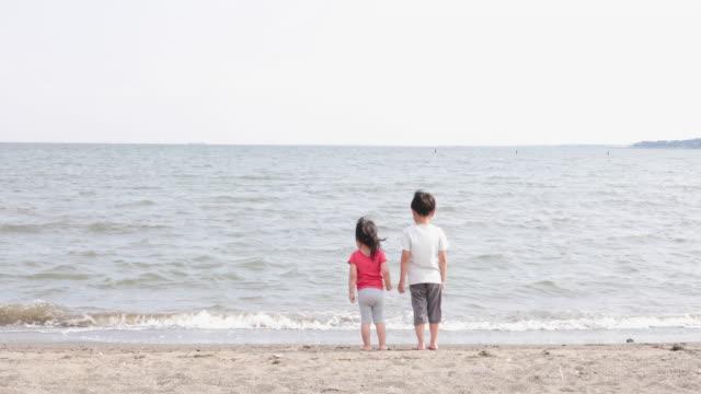 ビーチで遊ぶ兄弟 - 兄弟姉妹点の映像素材/bロール