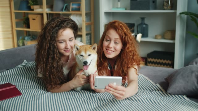 Siblings taking selfie with cute puppy lying on couch at home using smartphone