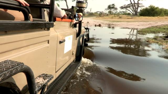 seite des safari fahrzeuge wie er durchquert river, botswana - großwild stock-videos und b-roll-filmmaterial
