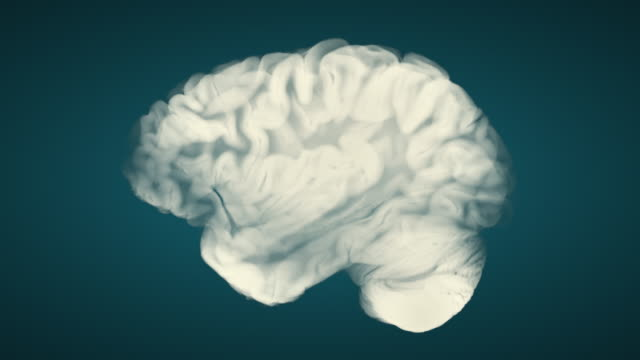 Side View Brain On Blue Background. Neurological Diseases, Tumors And Brain Surgery