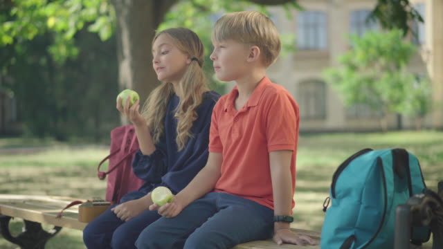 Side view middle shot of relaxed schoolchildren eating healthful apples for lunch outdoors. Positive Caucasian boy and girl sitting on bench at schoolyard chewing fruits.