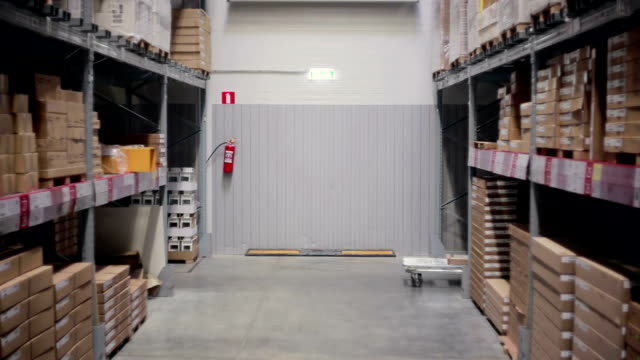 Une vue de côté d'un homme poussant un chariot dans un entrepôt de stockage - Vidéo