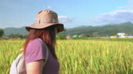 istock Side view of Asian woman walking on the ridge of paddy field under the sunset in a non-urban agriculture scene, The north of Thailand with feeling excited, positive emotion 1331576258
