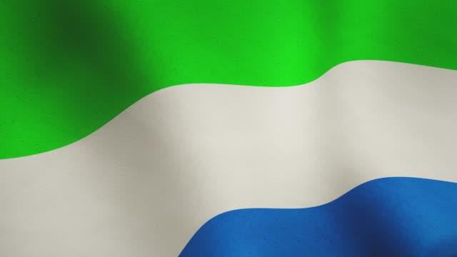 sierra leone background flag waving in the wind - seamless video animation - sierra leone video stock e b–roll