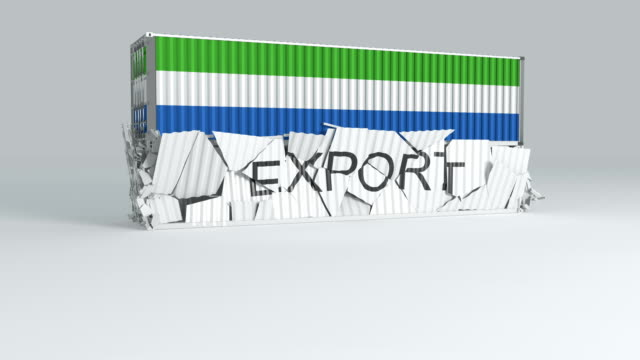 sierra leone container with  flag falls on top of a container labeled export - sierra leone video stock e b–roll